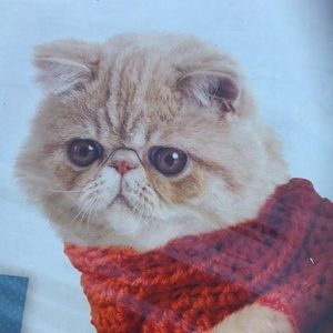 Cats in Sweaters complete craft kit & instructions